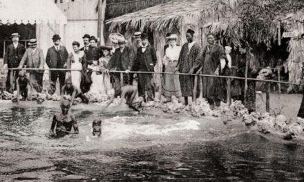 Historia del racismo: los zoológicos de humanos